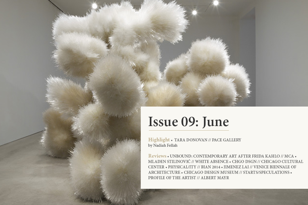 Issue009