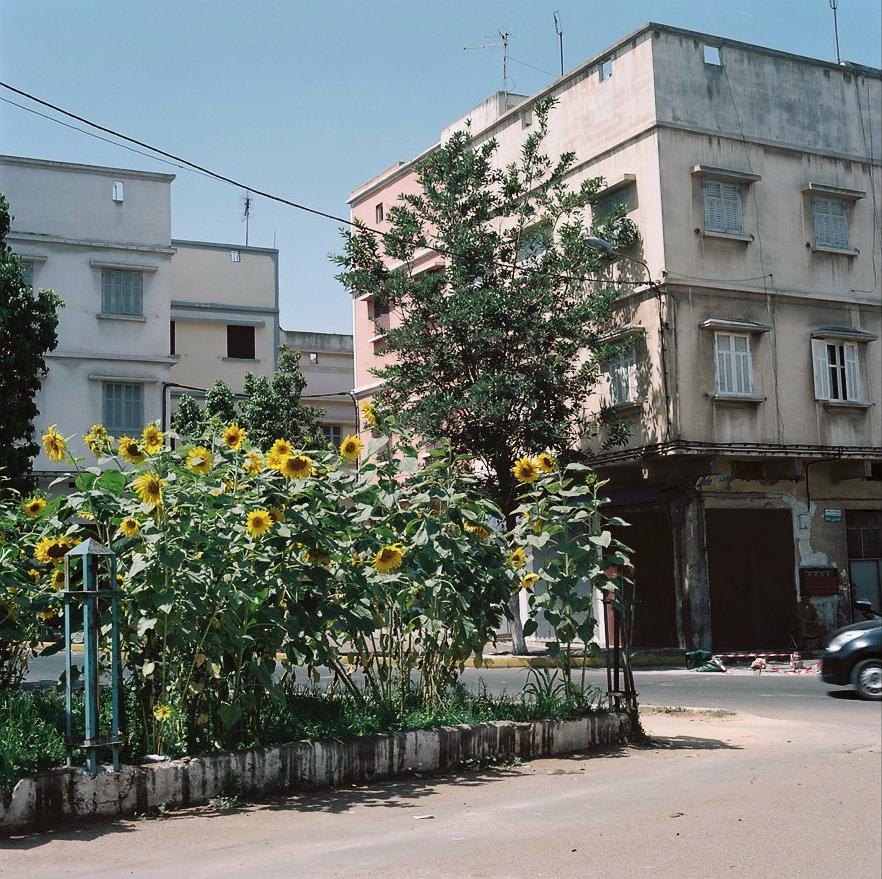 Barrada_Casa15