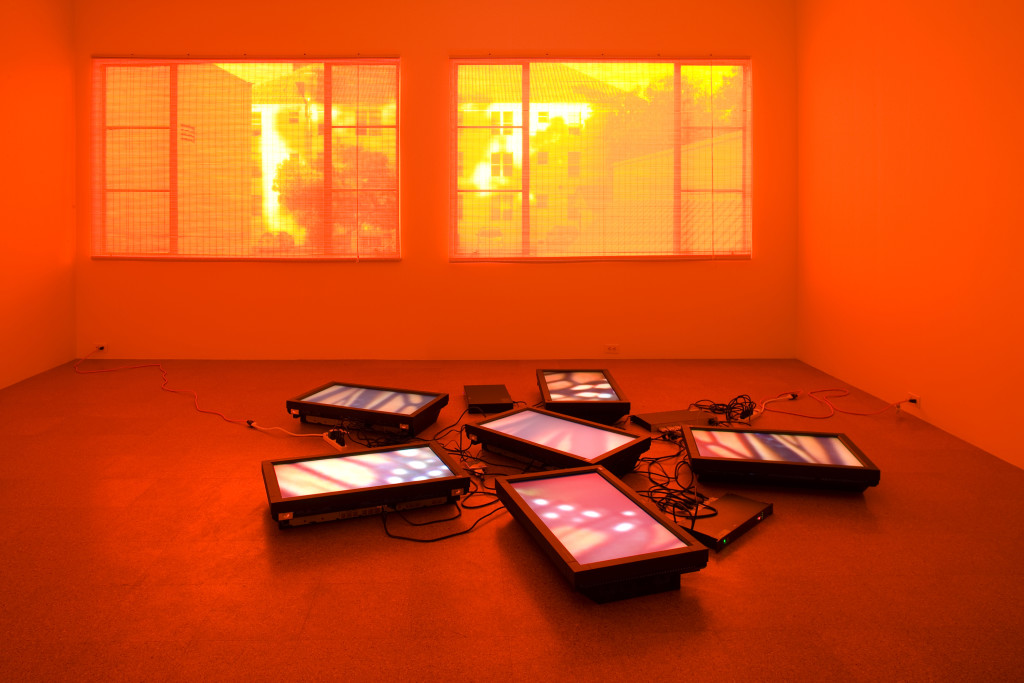 Untitled Videowall (Butterflies), 2008. Installation view, 1301PE, Los Angeles, 2008. © Diana Thater. Photo © Fredrik Nilsen, courtesy of 1301PE, Los Angeles.