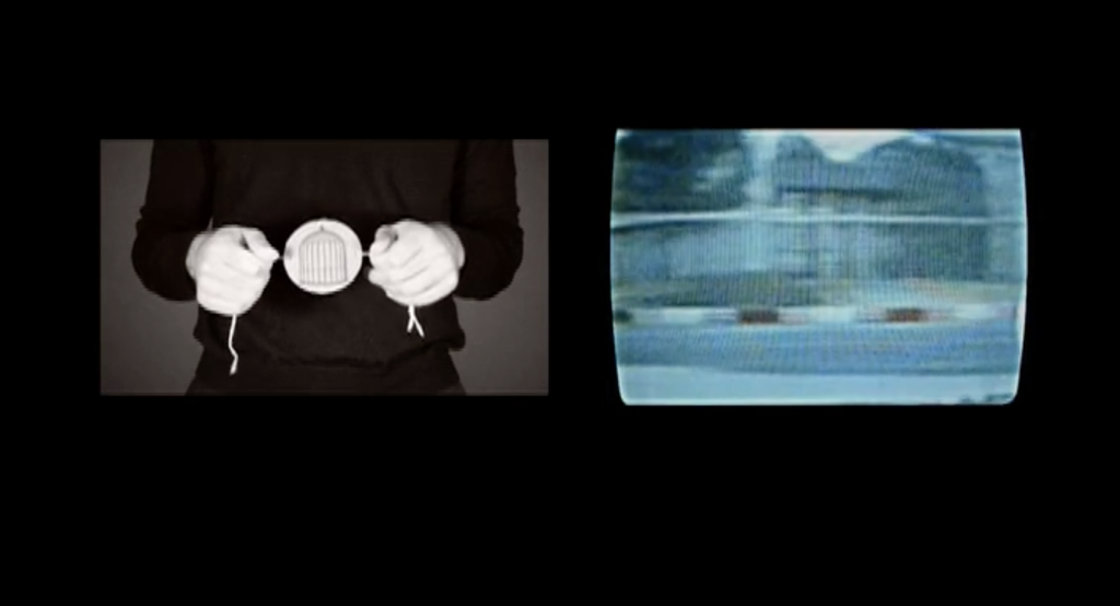 Virginia Colwell, The Song of Source, 2013, digital video NTSC,  4 minutes, 51 seconds. Courtesy of MARSO, Mexico City.