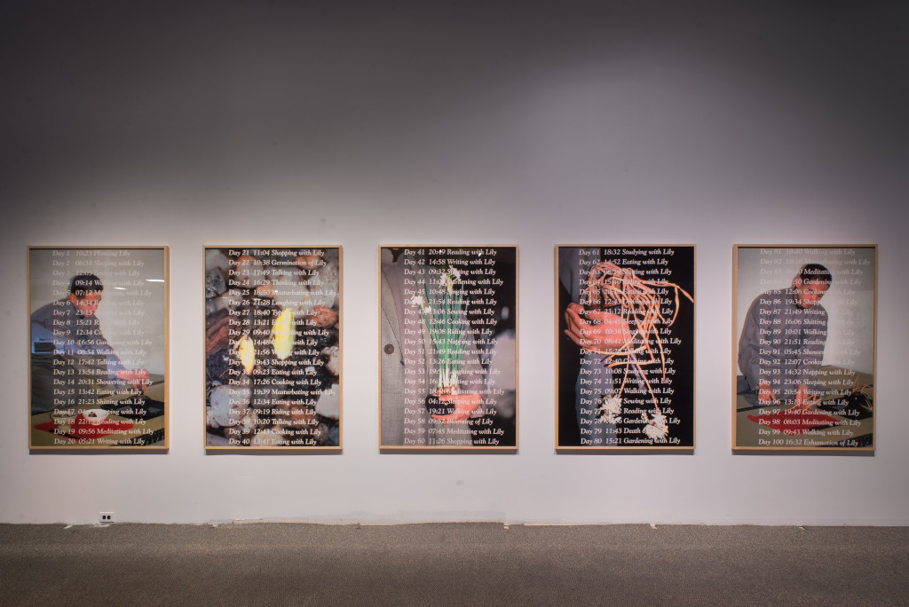 Lee Mingwei, 100 Days with Lily (series), 1995 / 2017. Silver dye bleach prints (ilfochrome); 5 pieces, 65.6 x 45.3 in each. Image courtesy of the artist and Honolulu Biennial Foundation. Photo credit: Chris Rohrer