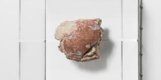 Daniel G. Baird, Moment IV, 2017. Fossilized tortoise, aluminum, acrylic, 3D printed hardware. 15.75 x 17.5 x 10 inches. Image courtesy of PATRON.