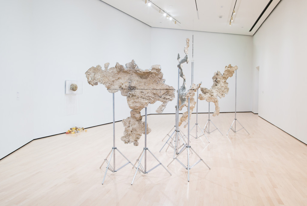 Field Station: Daniel G. Baird, installation view at the MSU Broad, 2017. The Eli and Edythe Broad Art Museum at Michigan State University. Photo Credit: Eat Pomegranate Photography.